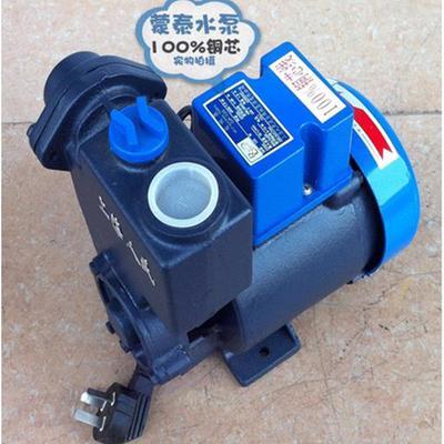 人民自吸泵太阳能泵抽水泵空调泵125w家用小型泵水冷