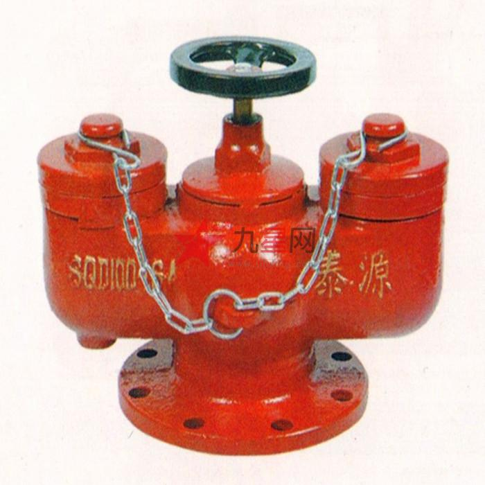 泰源 远泰消防 消防水泵接合器 多用式消防水泵接合器图片