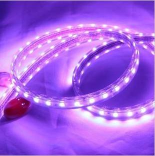 3258贴片变色led灯带 220v-3528-60灯-r